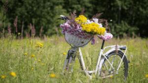 E-Bikes für alle Mitarbeiter bei Natururne.de