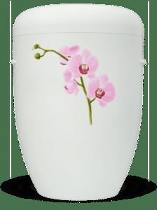 urne-home-1